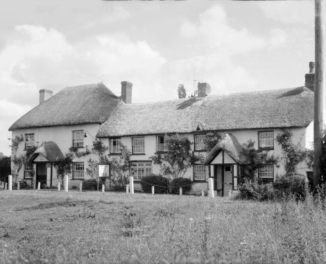 Old Thatch 6